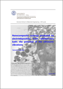nanocomposite thesis Which are the focus of my phd theses – were investigated thoroughly only from  the  preparation processes of carbon nanotube nanocomposites based on.