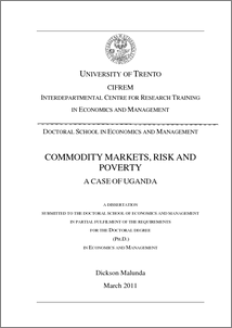 Doctoral thesis risk management